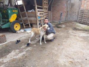 Canını kurtardığı köpeği sahiplendi