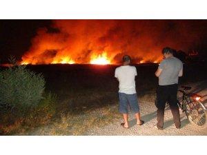 Göksu Deltası'nda çıkan yangın evleri teğet geçti