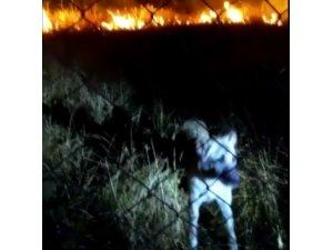 Alevler arasında kalan köpeği itfaiye ekipleri kurtardı