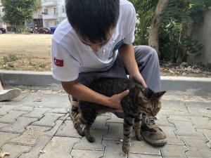 Alevlerin arasında kalan kediyi itfaiye böyle kurtardı