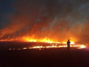Bingöl'de yangın, 300 dönüm kül oldu