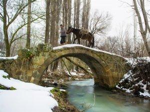 'Meram'da Kış' Fotoğraf Yarışması başladı!