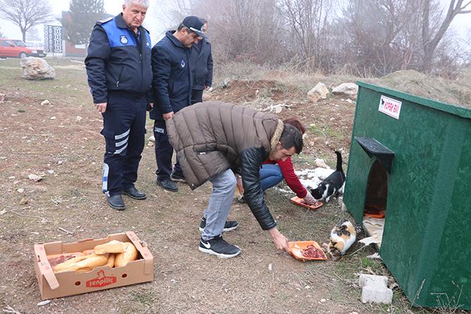 Beyşehir'de sokak hayvanları için beslenme alanlarına yiyecek bırakıldı