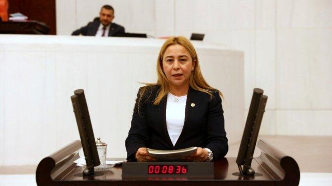 MHP Konya Milletvekili Esin Kaya veteriner hekimlerin istihdamını sordu