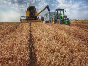 Ilgın'da çiftçi destekleme icmalleri askıya çıktı