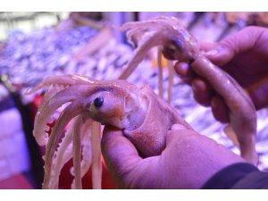 Bu deniz ürününü sadece bilenler alıyor