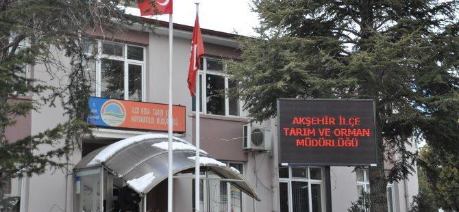 Akşehir'de köpek dövüşü yaptıranlara 257 bin lira ceza kesildi