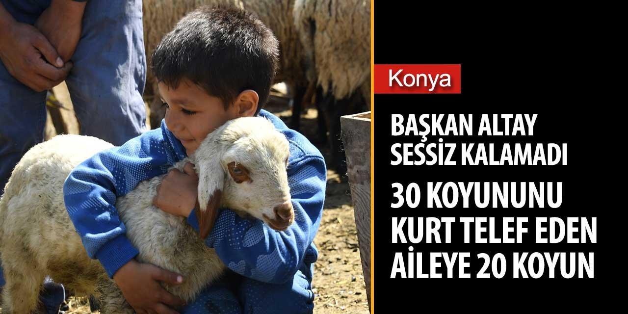 Konya'da koyunlarını kurt telef eden çiftçiye Başkan Altay sahip çıktı