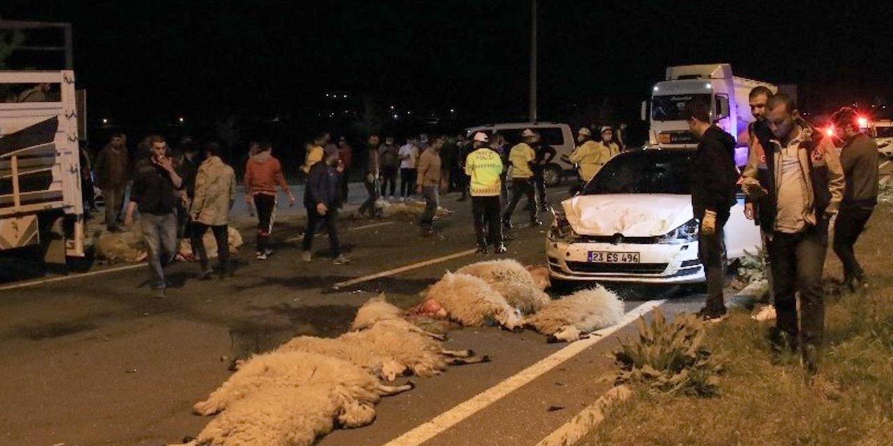 Yarış yaparken sürüye daldılar! 30 koyun telef oldu