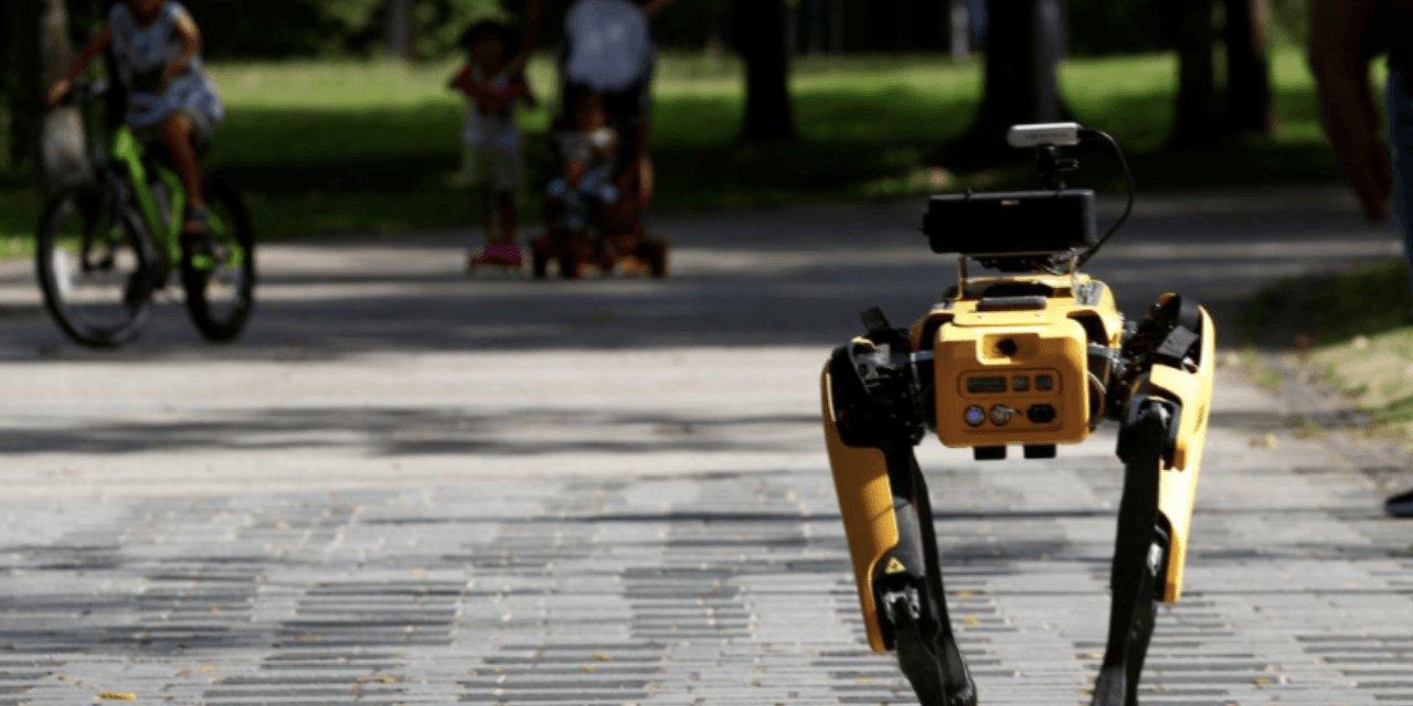 Singapur'da Sosyal Mesafeyi Robot Köpekler Yapacak