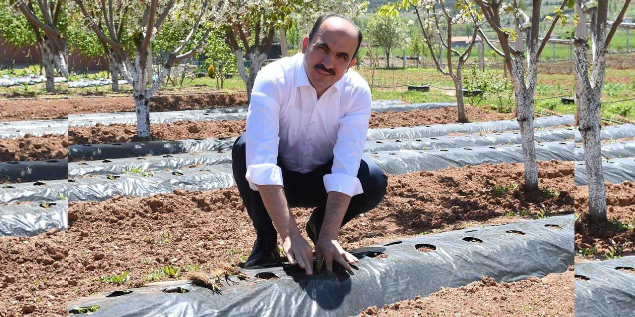 Başkan Altay tarımsal ihtilal için herşeyi yaptı sonucu bu yıl almayı bekliyor