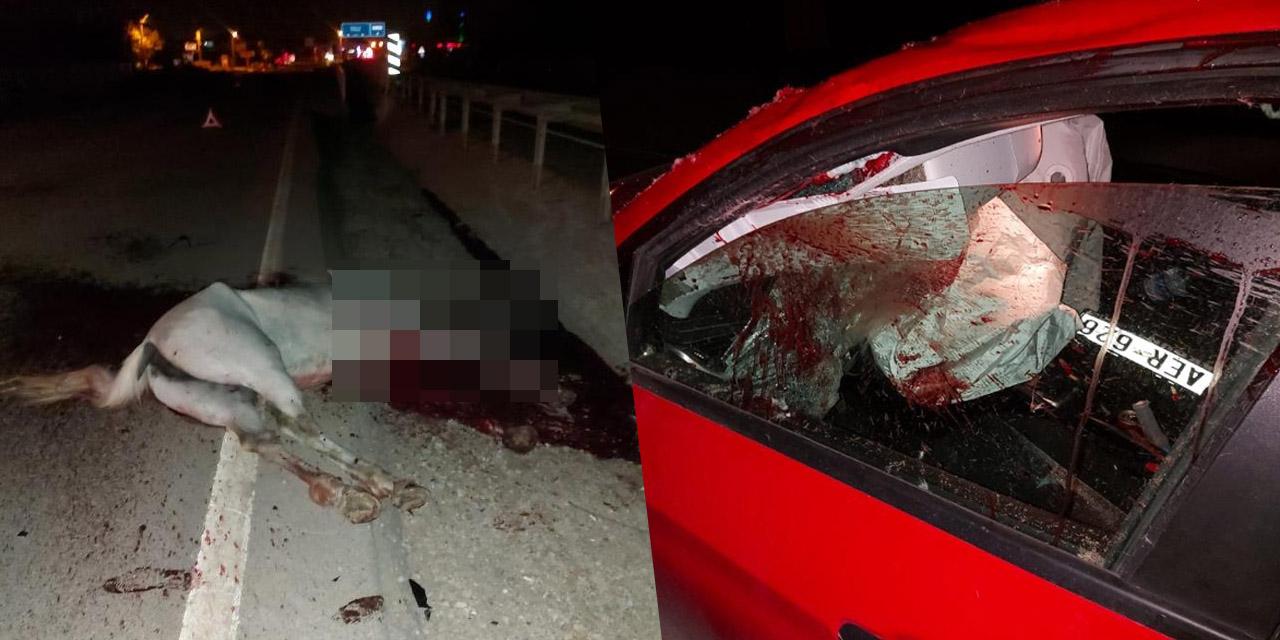 Ahırdan kaçan at karayoluna çıktı! Otomobilin çarptığı at telef oldu sürücü yaralandı