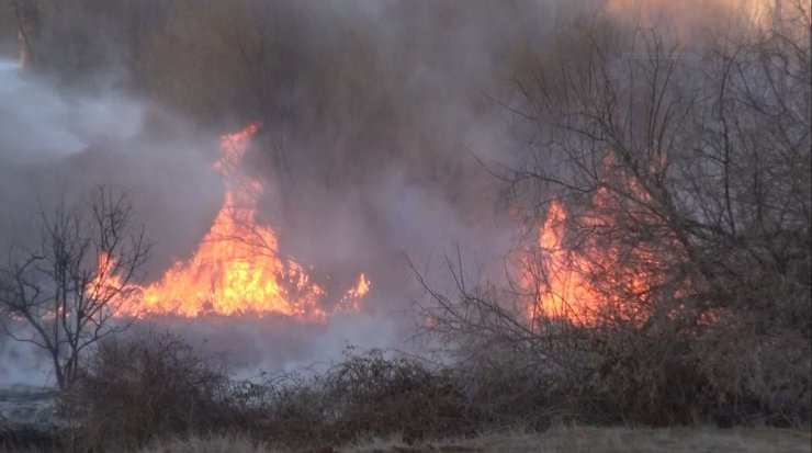 Ormanlık alanda çıkan yangını itfaiye ağaçlara sıçramadan söndürdü