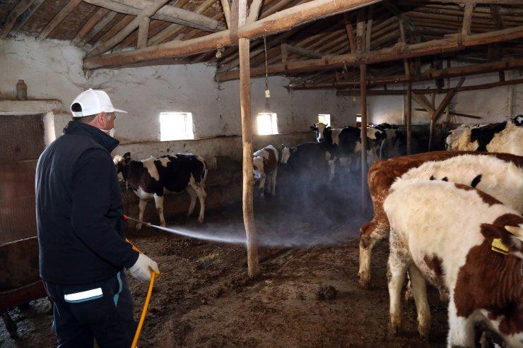 Aksaray Belediyesi larva ilaçlama çalışması başlattı
