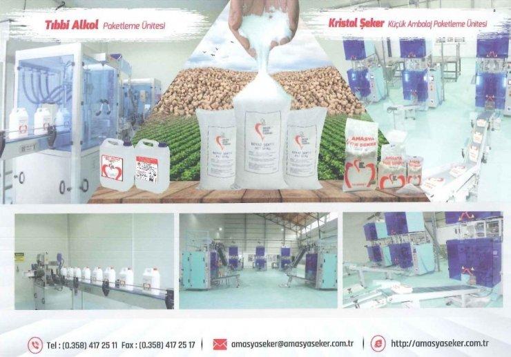 Amasya Şeker, 'etil alkol' üretimini artırdı