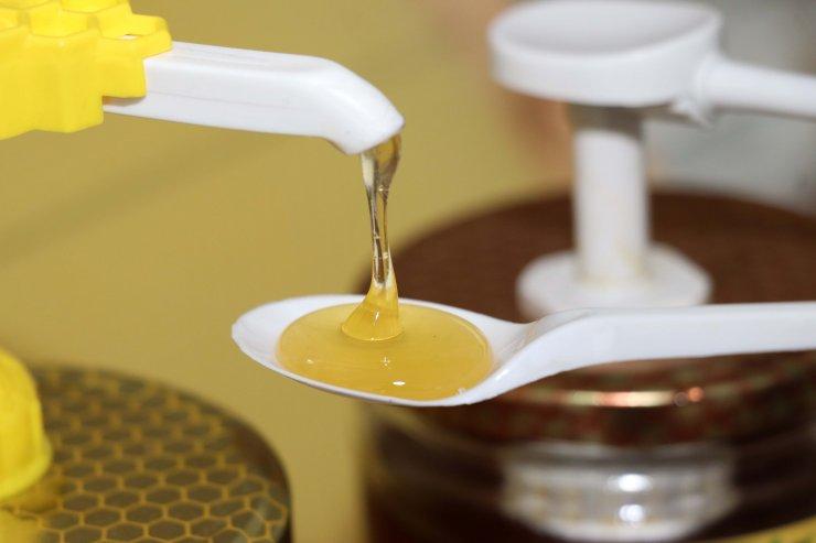 Arı ürünlerinin alternatif değil, tamamlayıcı tıp içerisinde değerlendirilmesi önerisi