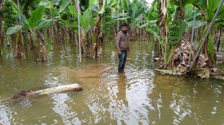 Erdemli'de Limonlu Deresi taştı seraları ve siteleri su bastı