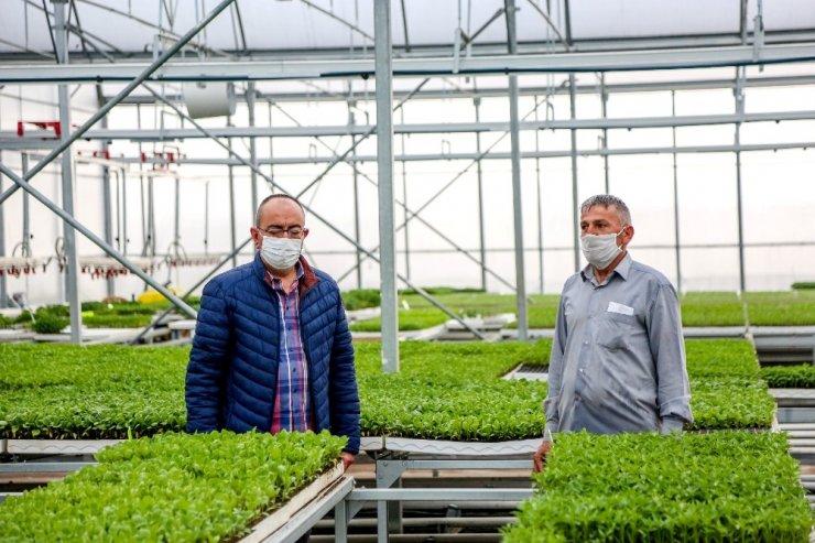 Meram'da üretilen 3 milyon fide çiftçiye umut oldu