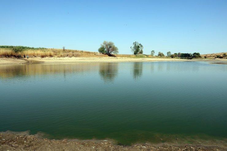 """Kuruyan gölette balıklara """"can"""" suyu verildi"""