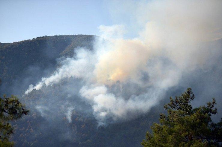 Yangının ardından Eskişehir Orman Bölge Müdürü Temel'den açıklama