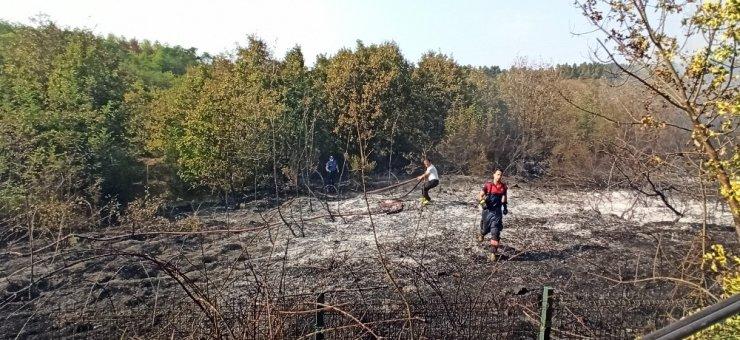 Düzce'de ormanlık alanda çıkan yangını polis ve itfaiye söndürdü