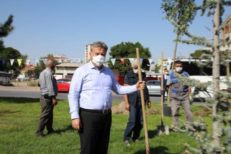 """Başkan Dr. Mustafa Palancıoğlu""""fidan değil, ağaç dikiyoruz"""""""