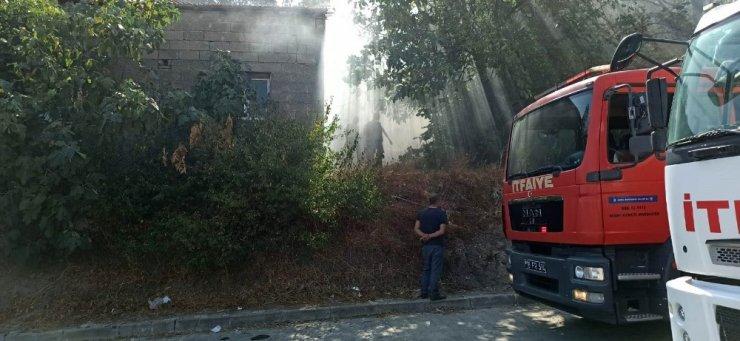 Bursa'da 'Benekli' ismi verilen inek yangından son anda kurtarıldı