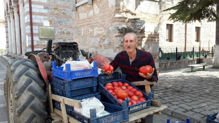 Bursa'da Osmanlı domatesi rekor kırdı