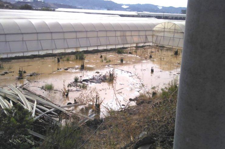 Patlayan sulama borusu tarım alanlarını sular içinde bıraktı