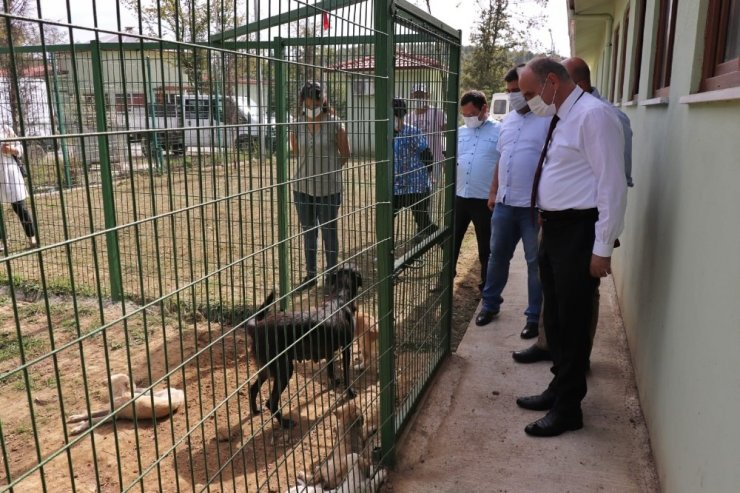 """Başkan Özlü """"Hayvan barınağı ilgi odağı oluyor"""""""