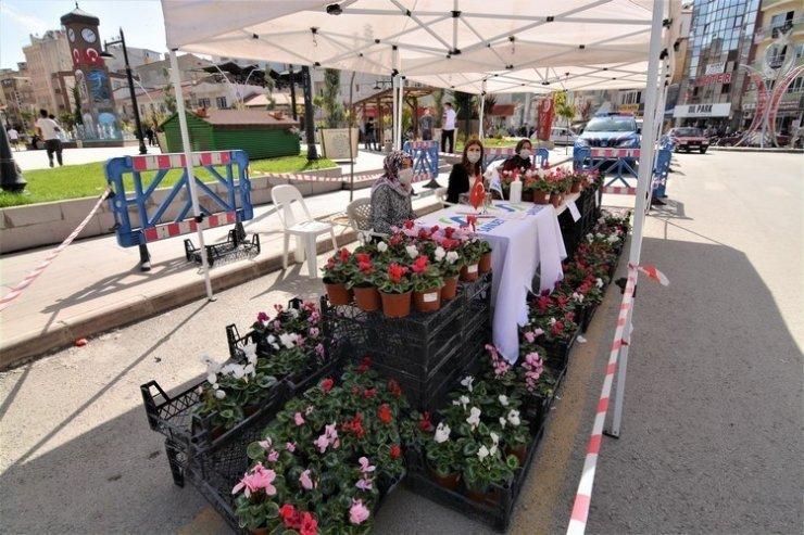 Sandıklı Belediyesinin mevsimlik çiçeklerine büyük ilgi