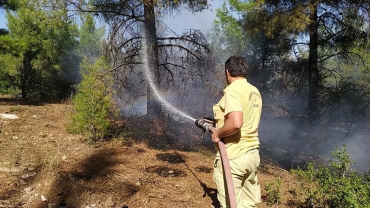 Denizli'deki orman yangınında kundaklama şüphesi