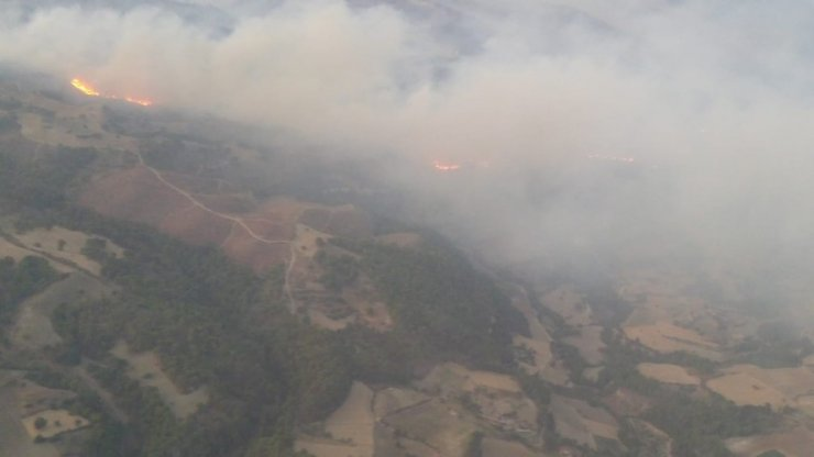 Manisa'daki orman yangını kontrol altına alındı