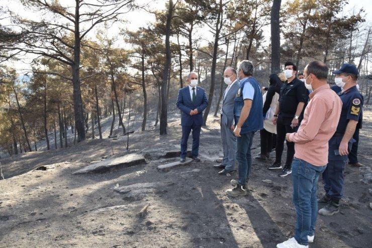 Vali Karadeniz yangın bölgesinde incelemelerde bulundu