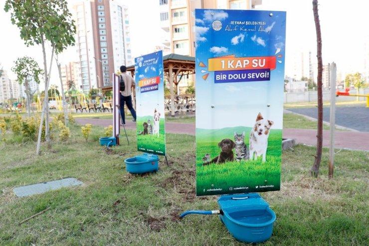 Sokak hayvanlarına yeni suluk