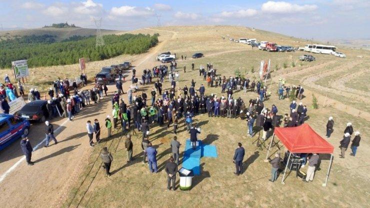 Afyonkarahisar'da 35 bin fidan toprakla buluştu