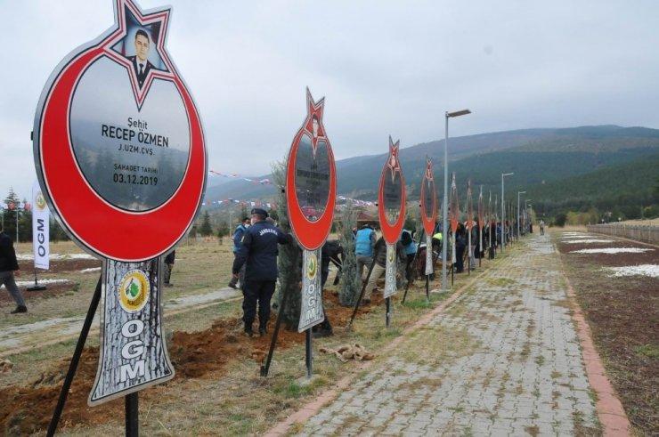 (Güncelleme) Akşehir'de 54 şehit için 54 fidan toprakla buluşturuldu