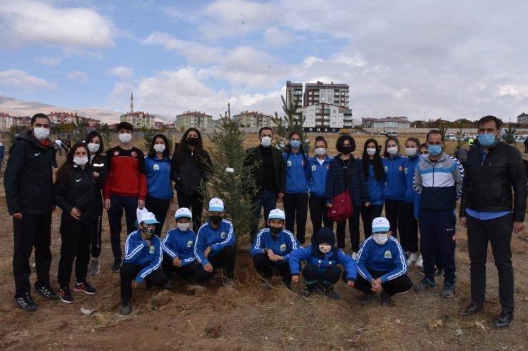 Tatvan'da yüzlerce fidan toprakla buluşturuldu