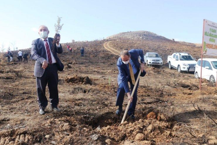 Bitlis'te fidan dikimi