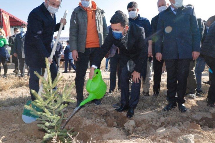 Nevşehir'de binlerce fidan toprakla buluştu
