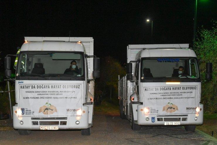 Ankara'dan gönderilen fidanlar Hatay'a can olacak