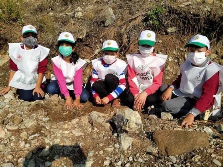 Erzin'de çam fidanları toprakla buluştu