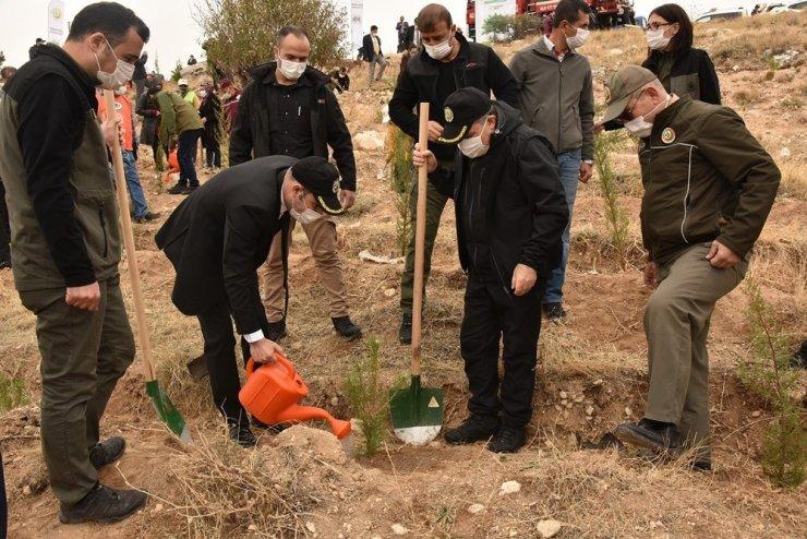 Karaman'da ağaçlandırma gününde 10 bin fidan toprakla buluştu