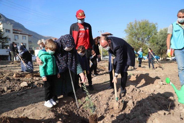 Pamukkale Belediyesinden Milli Ağaçlandırma Günü'ne destek